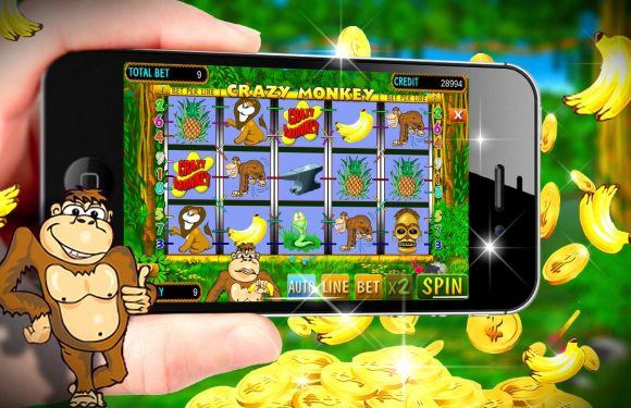 Crazy Monkey Slot: Win and have Fun